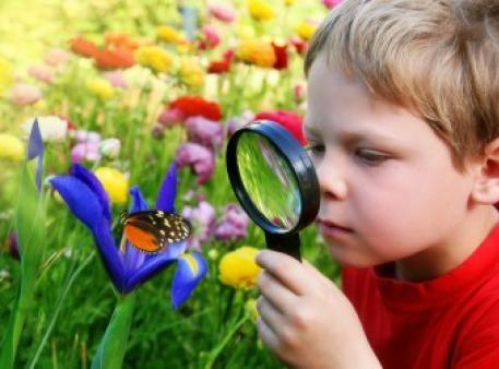 Наука для малюків: фундамент майбутнього пізнання