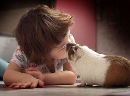 Як навчити дитину поважати та любити тварин