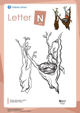 Розмальовка «Англійська абетка»: літера «N»