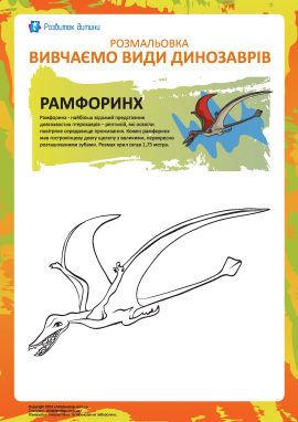 Розмальовка динозаври: рамфоринх