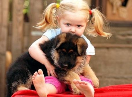 Чому часом дошкільник ображає тварин?