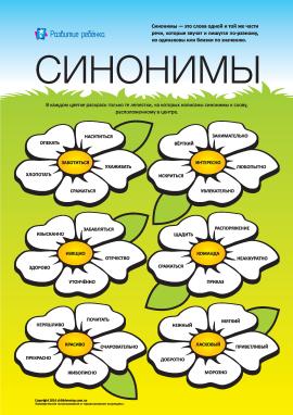 Вивчаємо синоніми: №3 (російська мова)