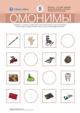 Омоніми № 8 («кисть, зебра, карта, зуб»)