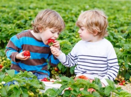 Як щодня розвивати в дитини доброту