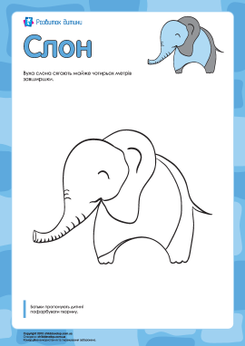 Розмальовка «Слон»