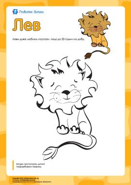 Розмальовка «Лев»