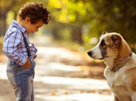 Що робити, якщо дитина боїться тварин