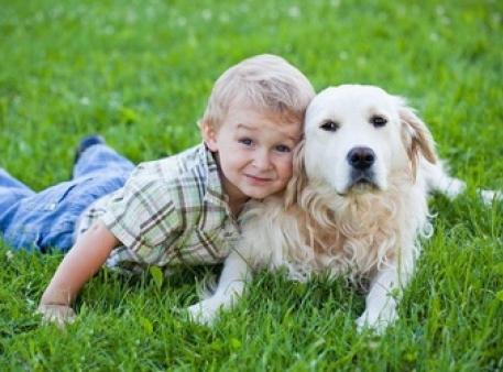 Позитивний вплив домашніх тварин на дітей
