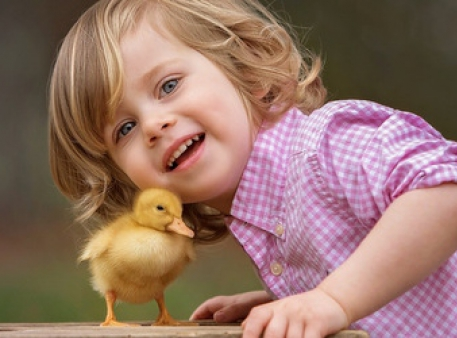 Співчуття до тварин – важлива частина виховання