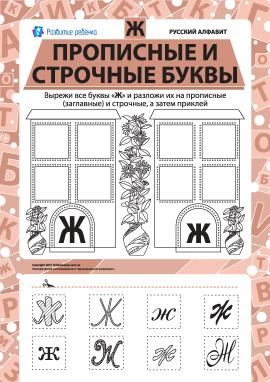 Учимо велику та рядкову літеру Ж (російська абетка)
