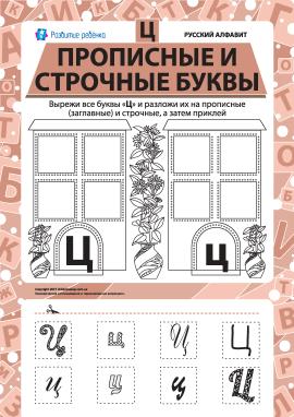 Учимо велику та рядкову літеру Ц (російська абетка)
