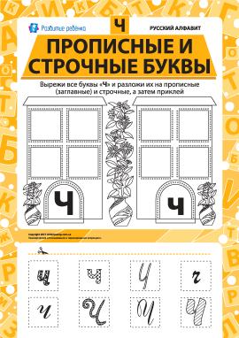 Учимо велику та рядкову літеру Ч (російська абетка)
