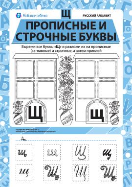 Учимо велику та рядкову літеру Щ (російська абетка)