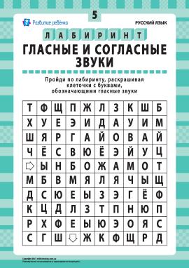 Голосні та приголосні звуки № 5 (російська мова)
