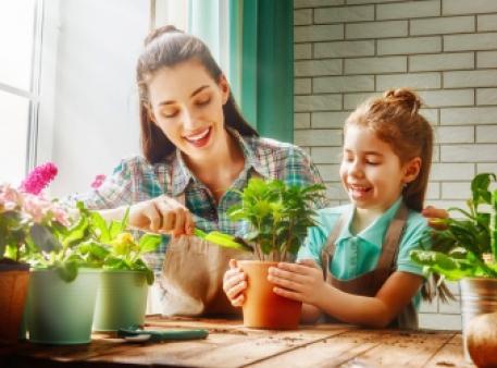 Прості способи очистити будинок від токсинів