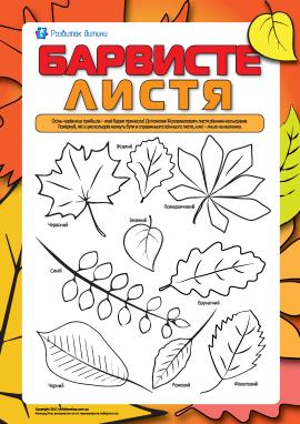 Барвисте листя: розмальовуємо та вивчаємо кольори