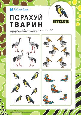Порахуй тварин: птахи