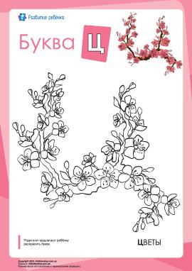 Розмальовка «Російська абетка»: літера «Ц»