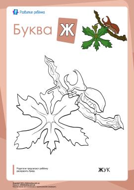 Розмальовка «Російська абетка»: літера «Ж»