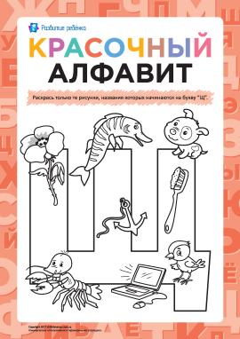 Розмалюй малюнки на літеру «Щ» (російська абетка)