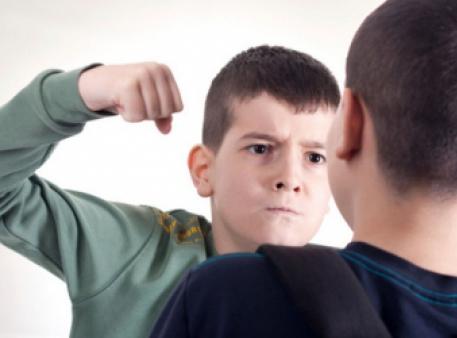 Гени й оточення дитини - причини дитячої агресії