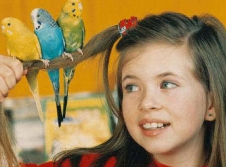 Спів птахів пояснює, як діти вчаться говорити