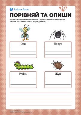Опиши малюнки та порівняй №10 (комахи)