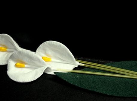 Білосніжні квіти-кали із підручних матеріалів