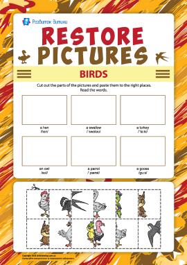 Виріж і наклей правильно зображення птахів (англійська мова)