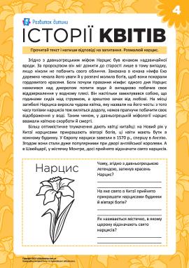 Історії квітів: нарцис