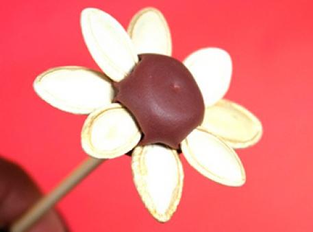 Ромашка з пластиліну і гарбузового насіння