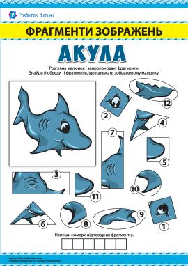 №1 Шукаємо фрагменти зображень: акула