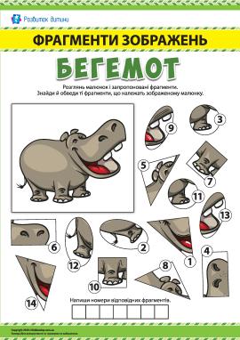 №2 Шукаємо фрагменти зображень: бегемот