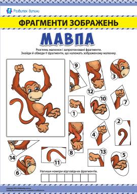 №5 Шукаємо фрагменти зображень: мавпа