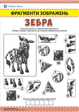 №7 Шукаємо фрагменти зображень: зебра