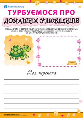 Особливості догляду за черепахами