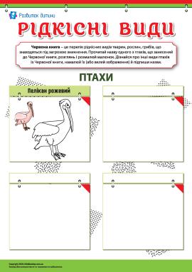 Вивчаємо рідкісні види птахів