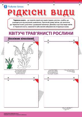 Вивчаємо рідкісні види квітучих трав'янистих рослин