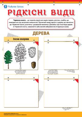 Вивчаємо рідкісні види дерев