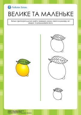 Які лимони однакові за розміром?