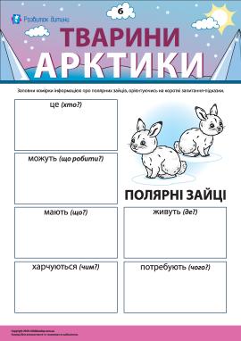 Розповідаємо про полярних зайців