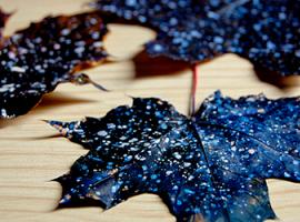 Мальовничий Всесвіт на осінньому листі