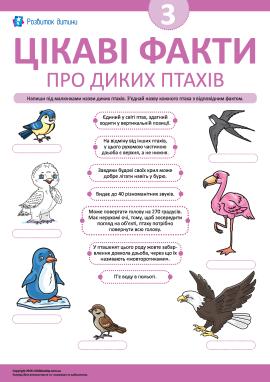 Дізнаємося цікаві факти про диких птахів