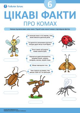 Дізнаємося цікаві факти про комах