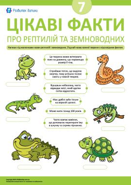 Дізнаємося цікаві факти про рептилій і земноводних