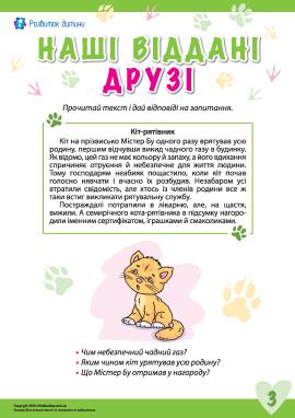 Історії про відданих тварин: кіт Містер Бу