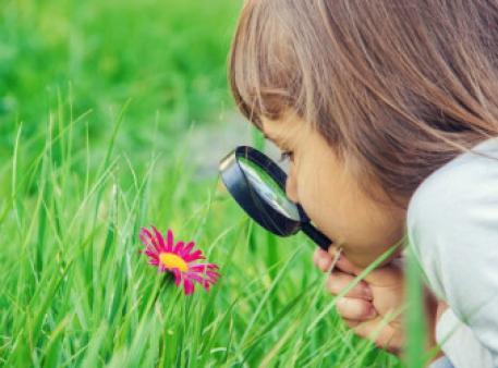 Розвиваємо в дітей природничу компетентність