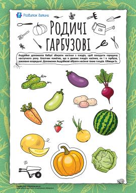 Родичі гарбузові: «збираємо» насіння