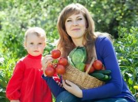 Як привчити дітей вирощувати і вживати овочі